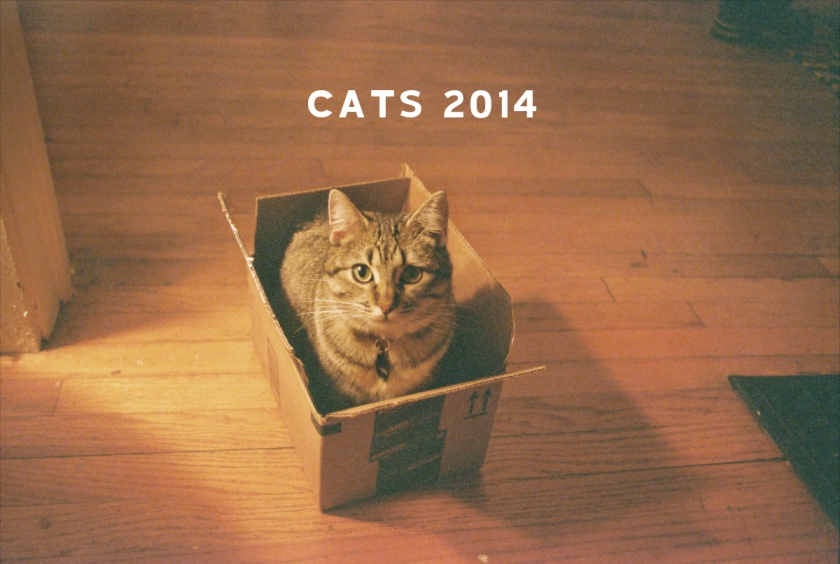 cats2014